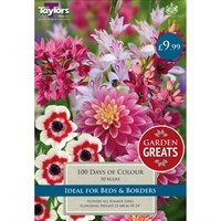 Taylors Bulbs 100 Days Of Colour Collection (50 Pack) (SV306)