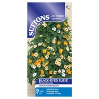 Suttons Black-Eyed Susie Seeds (106033)