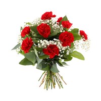 12 Red Carnations and Gypsophila Hand Tied Valentine's Day Bouquet