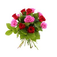 12 Short Stem Red & Pink Roses Hand Tied Valentine's Day Bouquet