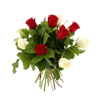 12 Short Stem Red & White Roses Hand Tied Valentine's Day Bouquet