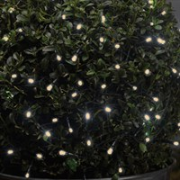 Smart Garden 100 Warm White Battery String Lights (1921102)