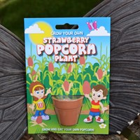 Fun Seeds - Grow Your Own: Strawberry Popcorn Plant