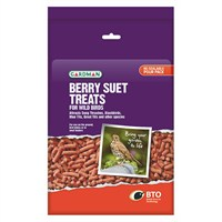 Gardman Large Berry Suet Treats 1.1kg (A04191)