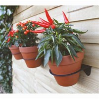 Ashortwalk ECO Plant Hanger (Set of 3) (PPH)