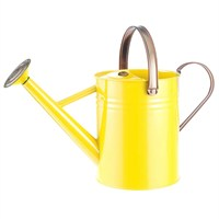 Gardman 4.5L (1 Gal) Metal Watering Can - Orange Zest (34872)