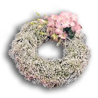Gypsophila Wreath 12 Inch