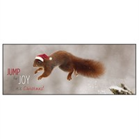 Noell Tatt 8 Pack Charity Christmas Cards - Red Squirrel - 7.5X20Cm (41543)