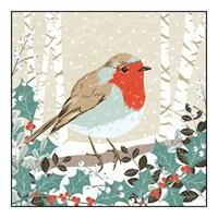 Noel Tatt 8  Pack Charity Christmas Cards - Robin on Branch - 12.5cm (41553)