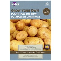 Taylors Bulbs Potato Catriona - 9 Pack (VP609)