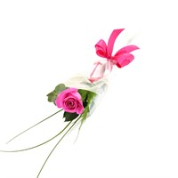 A Single Long Stem Pink Rose Valentine's Day