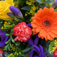 Bagshot Budding Little Florists Terracotta Pot Arrangement Workshop - Friday 21st February 2020