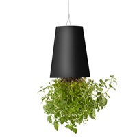 Boskke Sky Planter Recycled Upside Down Hanging Plant Pot 15cm - Black (BSP15B)