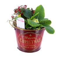 Christmas Festive Outdoor Red Bucket Planter