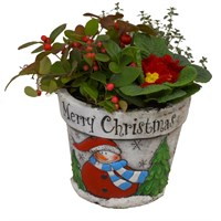 Christmas Festive Snowman Ceramic Mixed Planted Pot