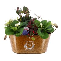 Christmas Festive Trough - Extra Large - Christmas Outdoor Planter