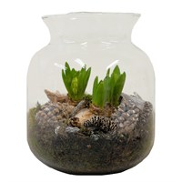 Christmas Planted Glass Jar Arrangement Houseplant Gift