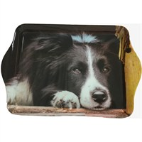Country Matters Collie Chill Out Trinket Trays (CMTT0130)