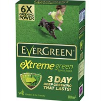 Evergreen Extreme green Box & 25% Extra Free - 80m2 (118026)