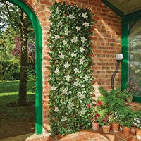 Gardman White Clematis Artificial Trellis - Large (03019)