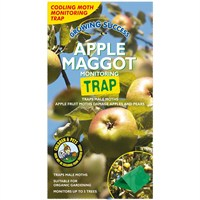Growing Success Apple Maggot Monitoring Trap (FYSM127J)