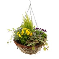 Hanging Basket Seasonal Wicker - 14 inches/35cm Diameter Bedding Container - Autumn