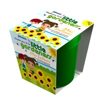 Little Gardeners Mini Sunflower Grow Pot (21798)