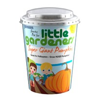 Little Gardeners Super Giant Pumpkins Starter Pot (21773)