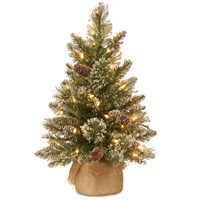 National Tree 60cm (2ft) Glittery Bristle Pine Artificial Christmas Tree Pre-Lit with LEDs (GB3-392-20-B)