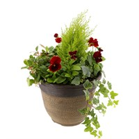 Planted Crackle Seasonal 12 inches Outdoor Pot Bedding Container - Autumn