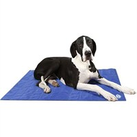 Scruffs X-Large Cool Mat - Blue (120 x 75cm)