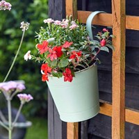 Smart Garden 6 Inch Fence & Balcony Hanging Pot - Sage (6030287)