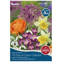 Taylors Bulbs 150 Days of Colour Collection - Pack of 50 (AV640)