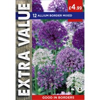 Taylors Bulbs Allium Border Mixed - Pack of 10 - Extra Value Range (EV134)