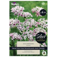Taylors Bulbs Allium Cameleon - Pack of 15 (SE2145)