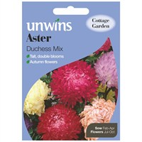 Unwins Seeds Aster Duchess Mix (30210023)