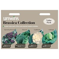 Unwins Seeds Brassica Collection 4 In 1 (30310497)