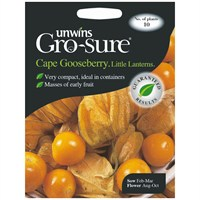 Unwins Seeds Cape Gooseberry Little Lanterns (30310340)