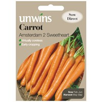 Unwins Seeds Carrot Amsterdam 2 Sweetheart (30310067)