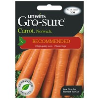 Unwins Seeds Carrot Norwich F1 (Recommended) (30310433)