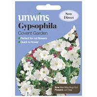 Unwins Seeds Gypsophila Covent Garden (30210101)