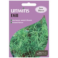 Unwins Seeds Herb Dill (30410012) Vegetable Seeds