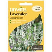 Unwins Seeds Lavender Ellagance Ice (Recommended) (30210440)