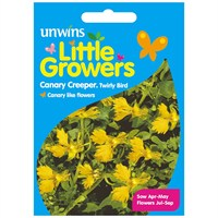 Unwins Seeds Little Growers Canary Creeper Twirly Bird (30510004)