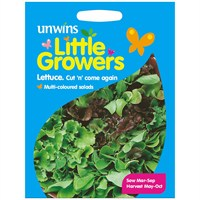 Unwins Seeds Little Growers Lettuce Cut n Come Again (30510010)