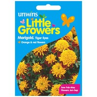 Unwins Seeds Little Growers Marigold Tiger Eyes (30510011)