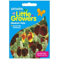 Unwins Seeds Little Growers Mexican Hats (30510012) Seeds for Kids