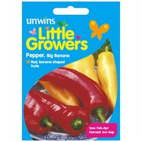 Unwins Seeds Little Growers Pepper Big Banana (30510019) Seeds for Kids