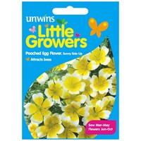 Unwins Seeds Little Growers Poached Egg Flower Sunnyside (30510020)