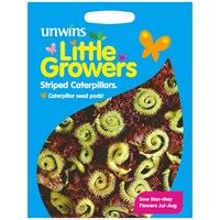 Unwins Seeds Little Growers Striped Caterpillars (30510027)